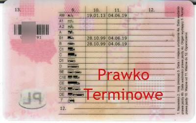 Prawo jazdy terminowe po WOMP