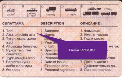 Zagraniczne prawo jazdy